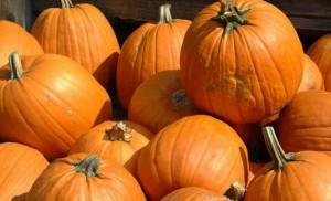 Henderson Fall Events